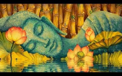 Deep rest meditation, a radical and transformative practice